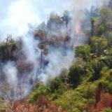 En video | Incendio en Sierra Nevada sigue sin control