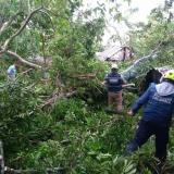 Por tormenta eléctrica poblaciones de Sucre amanecen sin agua y sin energía