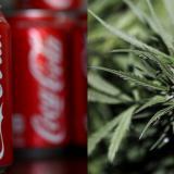 Coca Cola estudia desarrollar bebidas con un compuesto del cannabis