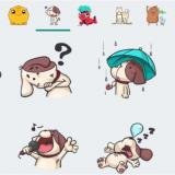 ¿Ya probaste los stickers de Whatsapp?