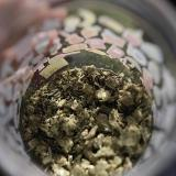 Corte Constitucional inadmitió demanda contra decreto que permite incautar droga