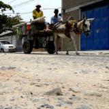 A través de proyecto de ley buscan sustituir vehículos de tracción animal
