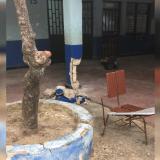 Institución educativa Sal Felipe Neri en Cartagena, en riesgo de colapsar