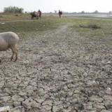 Fenómeno de El Niño se extenderá hasta marzo y afectará la temporada de lluvias