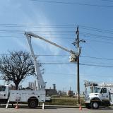 Electricaribe adelanta trabajos de poda de árboles en diferentes sectores de Barranquilla y Soledad.