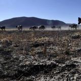El Niño apenas se está formando en la región: subsecretario para Gestión de Riesgo