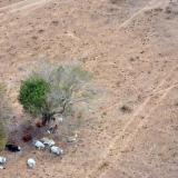 Por El Niño, nivel del río Magdalena bajó 32 cms en dos días