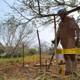 El desminado destierra el recuerdo de la violencia en Sucre