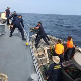 Hallan 1,7 tonelados de drogas en costas del Pacífico