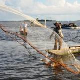 Firman alianza por la pesca responsable en el Golfo de Salamanca