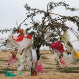 Acuerdo para la reducción del plástico de uso único