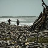 Rifirrafe por palizadas en las playas de Tubará