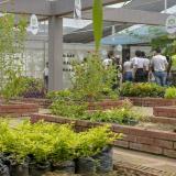 El invernadero hace parte de las 5,5 hectáreas del conocido Jardín Botánico en el barrio La Victoria.