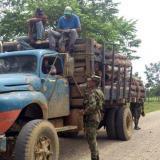 Las autoridades aseguran que las mafias deforestadoras tienen rutas clandestinas para el transporte de la madera que es sustraída de manera ilegal de la zona del Parque Nacional Nudo de Paramillo.