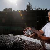 Plásticos contaminantes se transforman en casas ecológicas en oeste de México