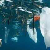 La ONU y National Geographic unen fuerzas para alertar sobre el uso de plástico