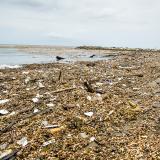 El islote de basura que llegó a las playas de Puerto Colombia, Atlántico, es el caso que se investiga.