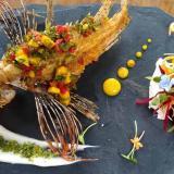 Pez león en chimichurri, para una gastronomía sustentable