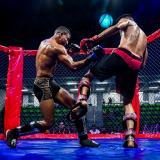 Michael 'La Era' Bustamante triunfa en las artes marciales mixtas ante Randal Otálora