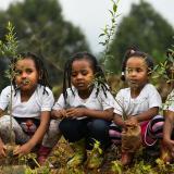 Las jóvenes etíopes participan en una campaña nacional de plantación de árboles en la capital, Addis Abeba.