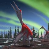 Identifican en Canadá uno de los animales voladores más grandes de la prehistoria