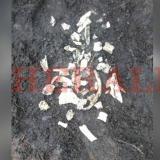 Analizan los restos óseos hallados en trocha de Juan Mina