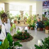 Las flores de Colombia son protagonistas de exposición