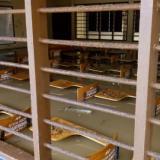 Los pupitres 'flotan' entre las aguas en el Colegio Juan XXIII de Purísima.