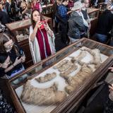 Hallan en Egipto momias de cachorros de león y 75 estatuas de madera y bronce