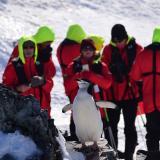 La Antártida se convierte en un codiciado destino del turismo de última oportunidad