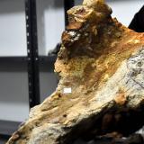 Un recorrido prehistórico en el Museo de La Peña
