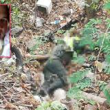 En una zona enmontada fue encontrado el cadáver del patrullero de la Policía José Cándido Campo Díaz (recuadro).