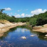 El Instituto Humboldt y Cerrejón encuentran 149 especies en el cauce modificado del arroyo Bruno