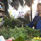 """""""Para su agüero, de Armero llegó el yerbero"""": vendedor"""