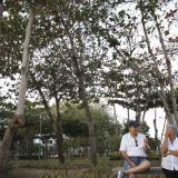 Vecinos conversan en el parque Villa Tivoli.