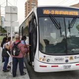 Transmetro suspende una ruta y desvía cinco durante el fin de semana por desfiles de Carnaval