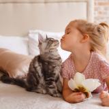 Las vacunas y una buena alimentación ayudan a aumentar las defensas de los animales.
