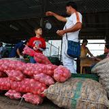 Reportan disminución de precios de alimentos en Granabastos