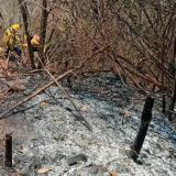 En video | Incendio en Tigrera, de la Sierra Nevada, está controlado en un 30%: bomberos