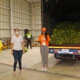 Bananeros de Magdalena, La Guajira y Cesar han donado 377 toneladas de la fruta