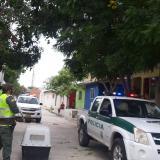 Puercoespín está protegido: comunidad de Polonuevo