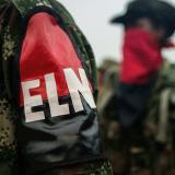 Otros siete guerrilleros del ELN se desmovilizan en zona rural de El Tambo, en Cauca
