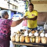 Micronegocios ocupan a 8,3 millones de personas en el país