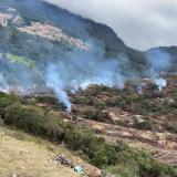 Talan 80.000 árboles e incendian parte de área protegida de Bogotá