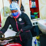 Una empleada de una peluquería instala un papel adhesivo que se retira luego de que cada cliente se recueste en el lavadero.