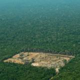 Deforestación en la Amazonía.
