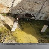 Construcción abandonada, foco de proliferación de animales en Barranquilla