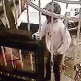 Matan de dos tiros a hombre en el Día del Padre