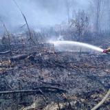 Un bombero apaga el fuego que se registra en una zona del Vía Parque.
