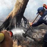 En video | Incendio en Salamanca arrasó 15 hectáreas de mangle